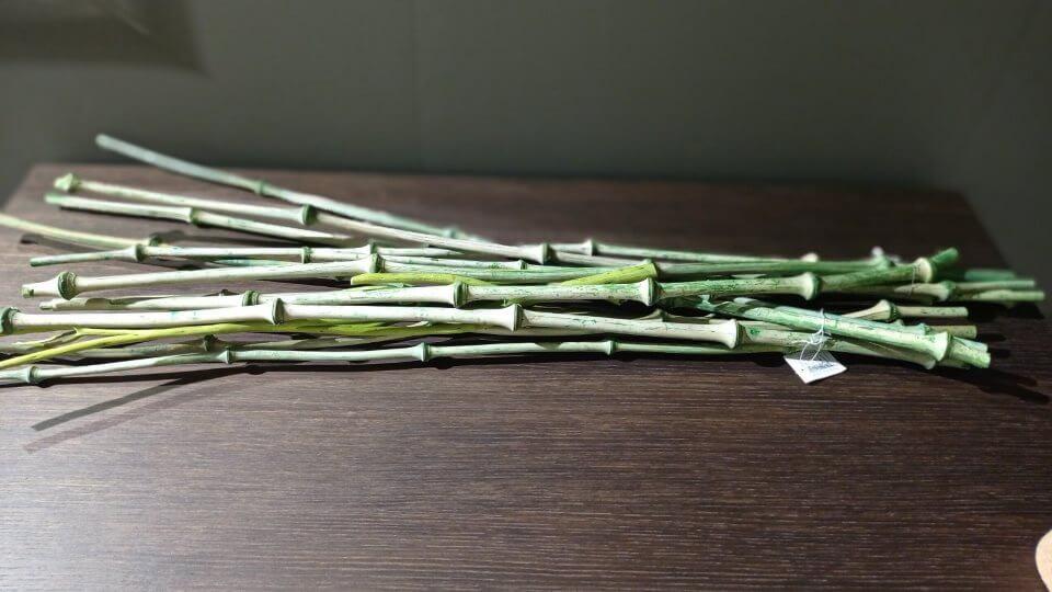 Декор Bambou от французской фабрики Gautier итальянская мебель в Одессе